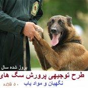 طرح توجیهی پرورش سگ آموزش دیده به ظرفیت 50 قلاده سال 97